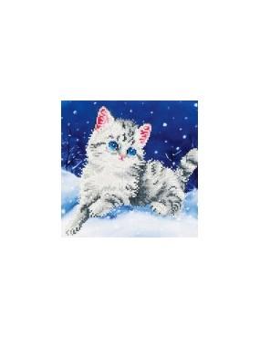 KITTEN IN THE SNOW GATTO...
